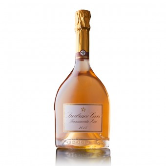 FRANCIACORTA DOCG ROSE' MILLESIMATO 2014 - 0.75 L - Derbusco Cives